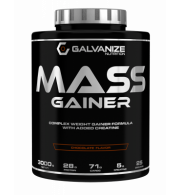 Galvanize Mass Gainer